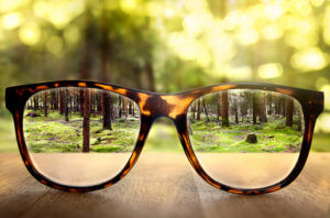 glasses adding transparency and clarity to a forest